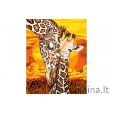 Tapymas pagal skaičius Žirafa 40X50 CM H100
