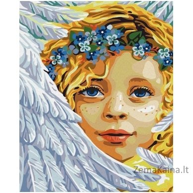 Tapymas pagal skaičius: Angelas (50x40 cm T50400192)