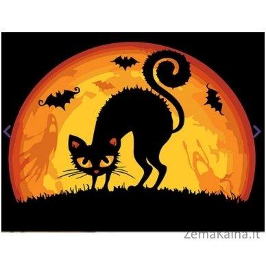 Tapymas pagal skaičius: Halovino katė (16.5x13cm T16130050)