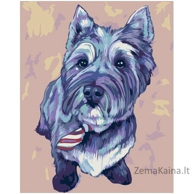 Tapymas pagal skaičius: Kernterjeras Cairn Terrier (16.5x13 cm T16130068)