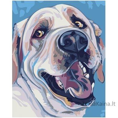 Tapymas pagal skaičius: Labradoras (16.5x13 cm T16130083)
